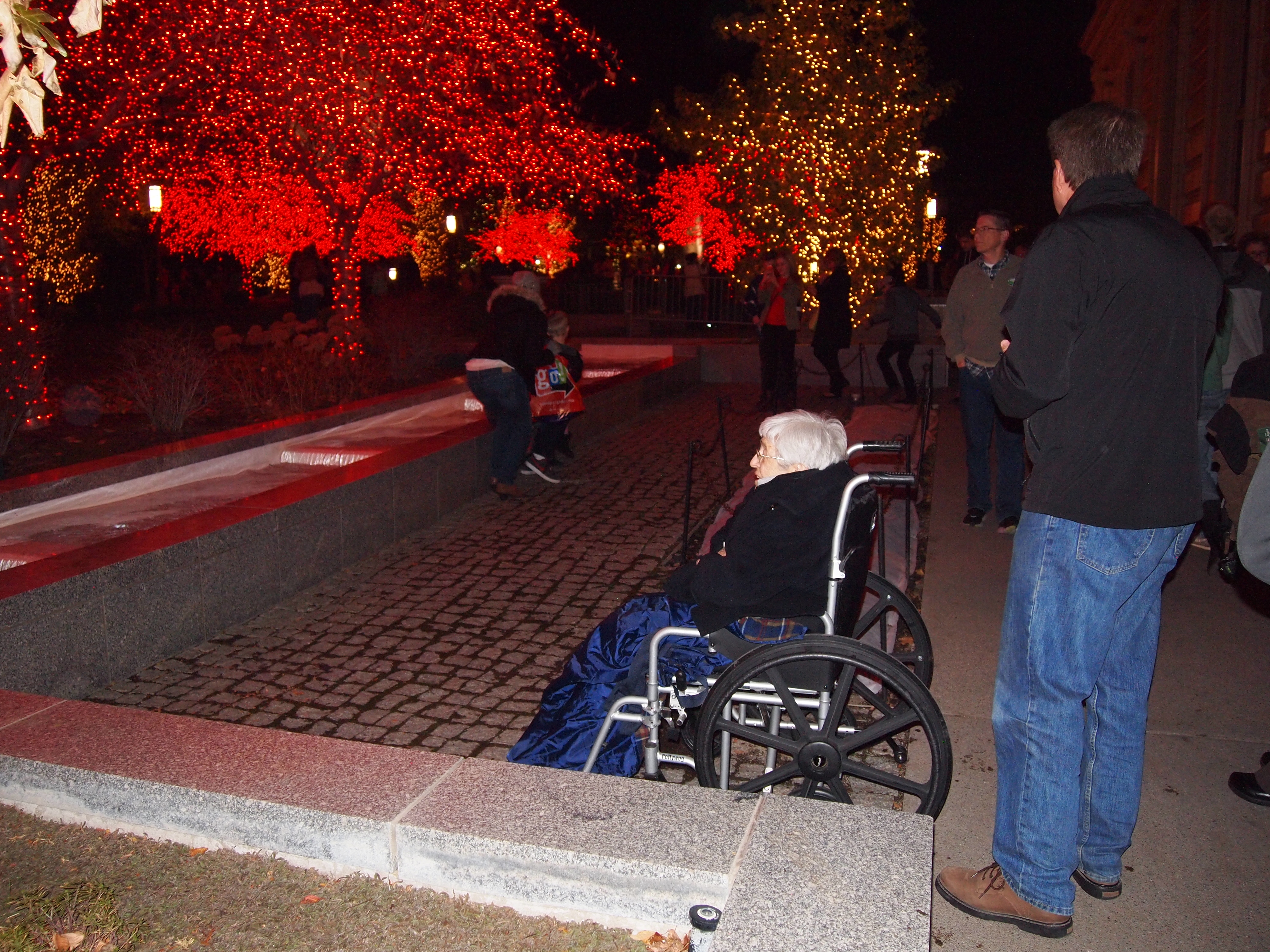 Temple Square lights13 2014