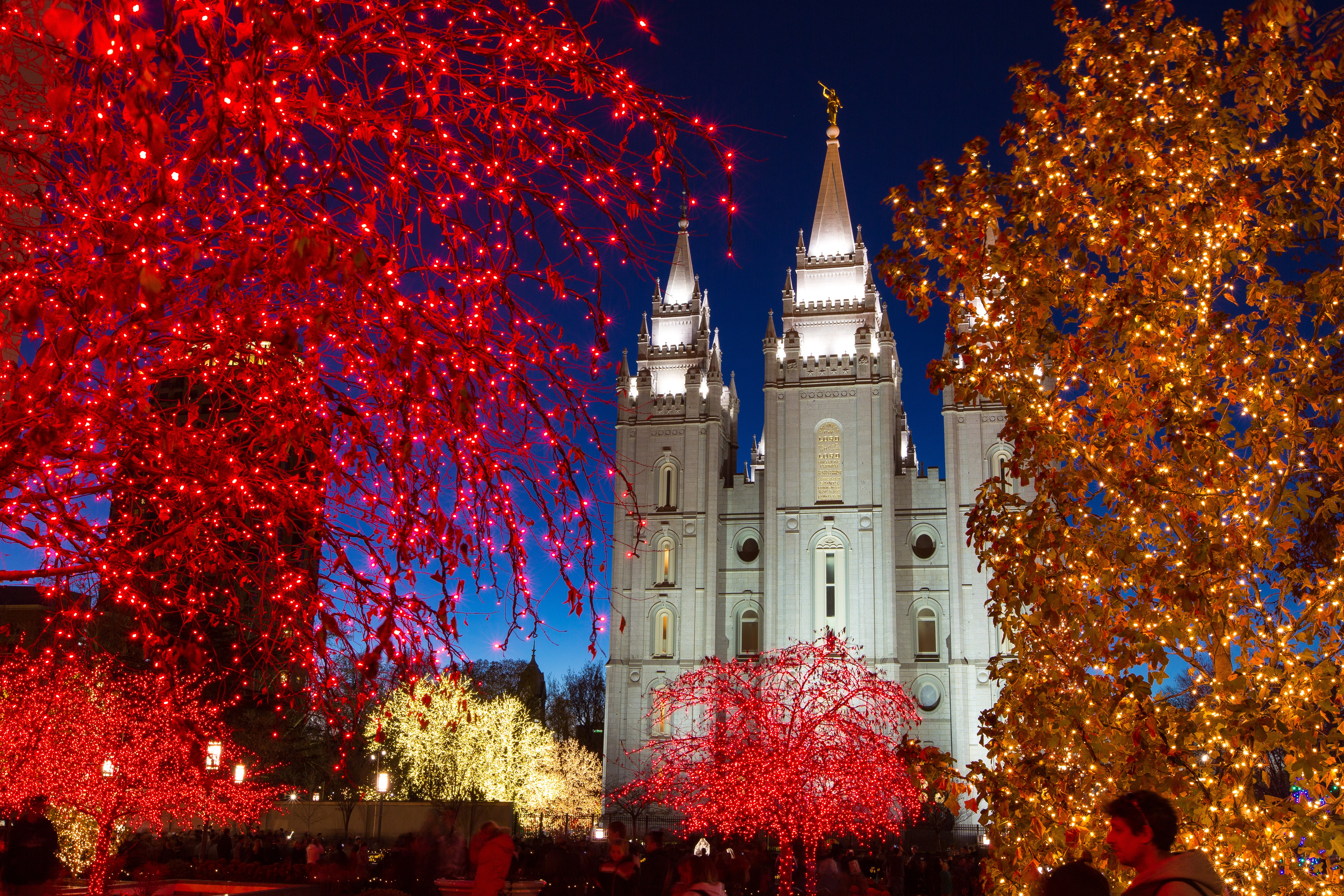 Temple Square lights25 2014