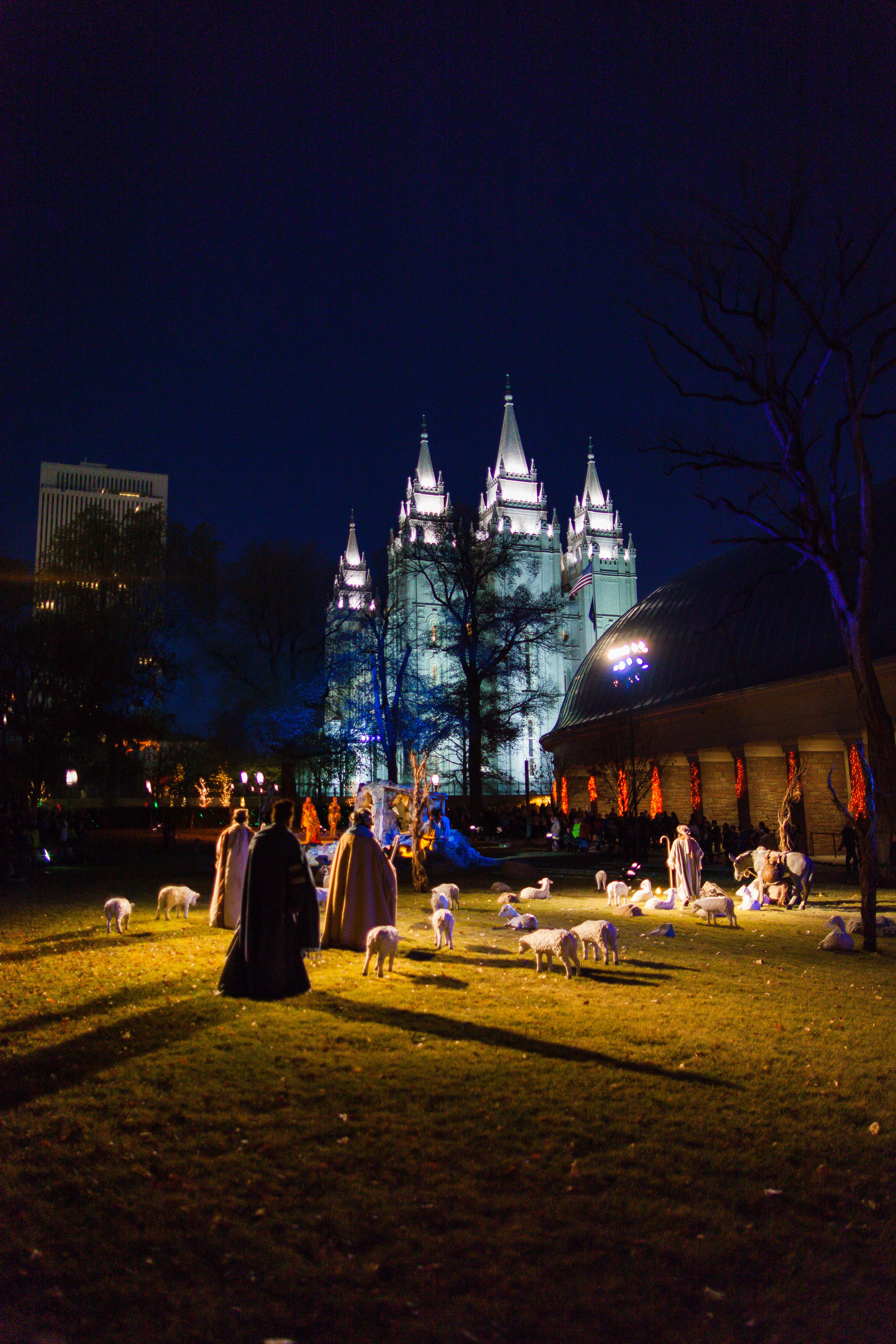Temple Square lights27 2014