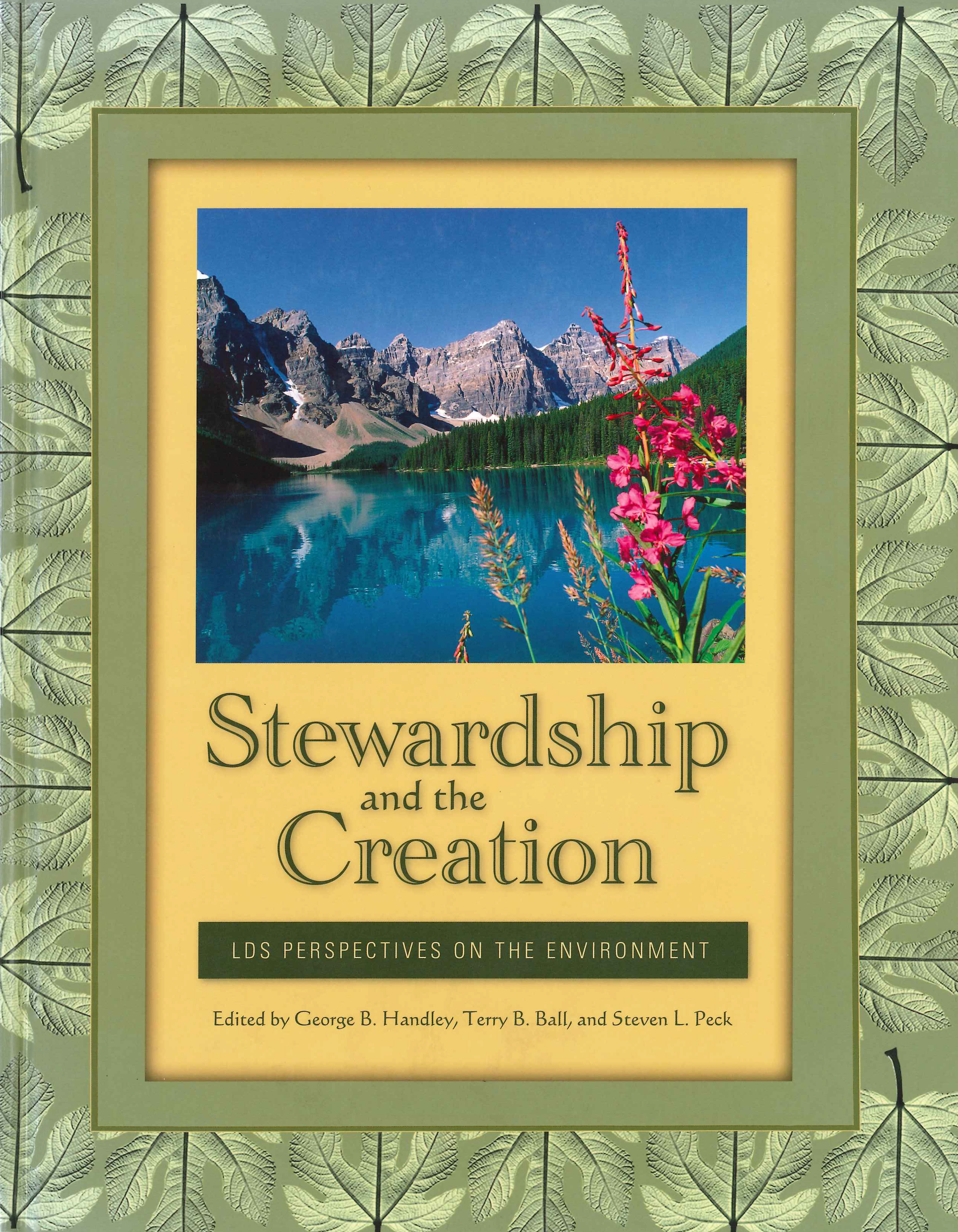 stewardship creation book